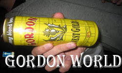 Gordon Beer World
